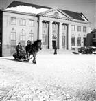 VINTERBILD BANK HÄSTTRANSPORT